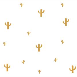 Kaktusz falmatrica | okker