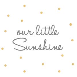 Little sunshine falmatrica